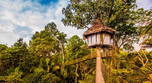 Tree House Lodge Peru