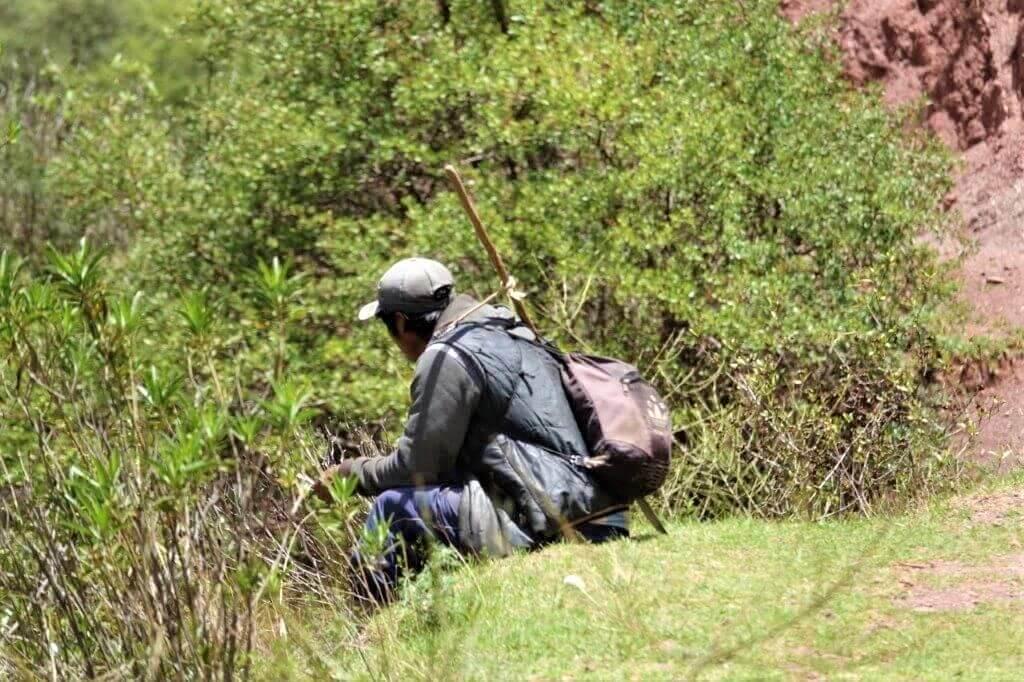 Inkilltambo Hike Cusco
